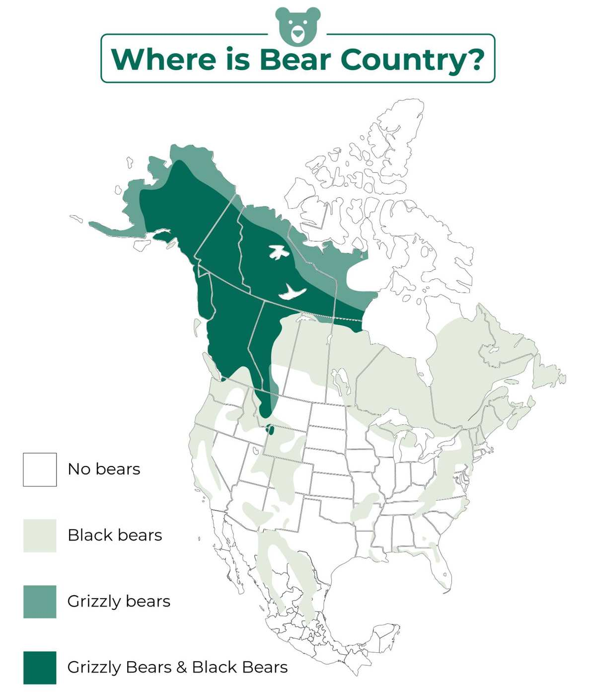 where are bears found