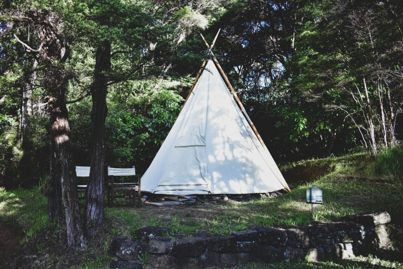 a white teepee under green trees
